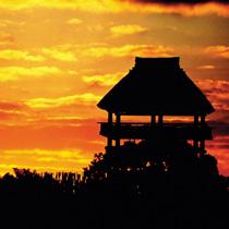 吉野ケ里歴史公園(神埼市、吉野ケ里町)